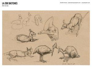 LA Zoo Sketches